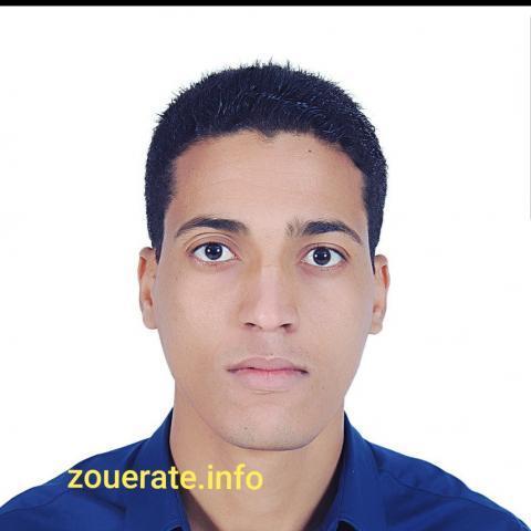 محمد الحنشي ولد أحمد