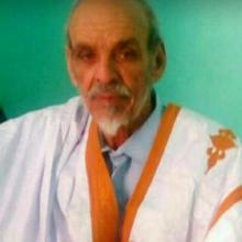 محمد ولد محمد الامين