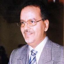 محمد ولد الناني-وزير سابق